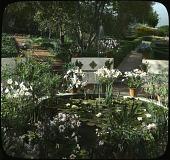 view Young Garden digital asset: Young Garden: [between 1914 and 1949?]