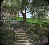 view Bauer Garden digital asset: Bauer Garden: [between 1914 and 1949?]