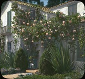 view Osgood Garden digital asset: Osgood Garden: [between 1914 and 1949?]