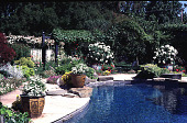 view [Untitled Garden in Hillsborough, California]: view south to north - swimming pool and metal arbor. digital asset: [Untitled Garden in Hillsborough, California]: view south to north - swimming pool and metal arbor.: 1997 May.