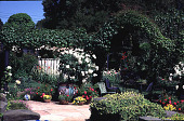 view [Untitled Garden in Hillsborough, California]: arbor from right to left (east to west), featuring Iceberg rose in pots, wisteria, Boston ivy, clematis of different types, and jasmine polyanthus. digital asset: [Untitled Garden in Hillsborough, California]: arbor from right to left (east to west), featuring Iceberg rose in pots, wisteria, Boston ivy, clematis of different types, and jasmine polyanthus.: 1997 May.