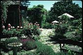 view Jessup Garden digital asset: Jessup Garden: 06/23/1993