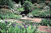 view University Of California Botanical Garden digital asset: University Of California Botanical Garden: 05/01/1990