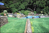 view [Untitled Garden in Hillsborough, California]: looking across lawn and terraces to swimming pool area and rock garden. digital asset: [Untitled Garden in Hillsborough, California]: looking across lawn and terraces to swimming pool area and rock garden.: 1985 May.
