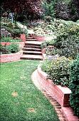 view [Bertero Garden]: looking up toward the hillside terrace garden. digital asset: [Bertero Garden]: looking up toward the hillside terrace garden.: 1990 May.