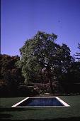 view Schwab Garden digital asset: Schwab Garden: 1996 Apr.