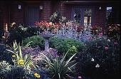 view Elliot Garden digital asset: Elliot Garden: 1996 May.