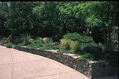 view Greenberg Garden digital asset: Greenberg Garden: 05/17/1996