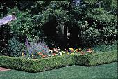 view Untitled Garden in Hillsborough, California digital asset: Untitled Garden in Hillsborough, California: 08/14/1996