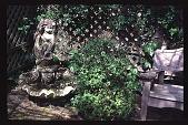 view [Magowan Garden]: North garden at seating area. digital asset: [Magowan Garden]: North garden at seating area.: 1996, Aug. 15.