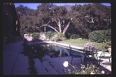 view [Untitled Garden in Santa Barbara, California]: looking east across pool. digital asset: [Untitled Garden in Santa Barbara, California]: looking east across pool.: 1997 May 20.