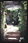 view [Mitchell Garden]: steps through ivy arch. digital asset: [Mitchell Garden]: steps through ivy arch.: 1997 May.