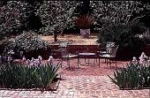 view [Volk Garden]: a brick patio with iris. digital asset: [Volk Garden]: a brick patio with iris.: 1999 Apr.