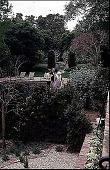 view [Volk Garden]: plantings around the pool. digital asset: [Volk Garden]: plantings around the pool.: 1999 Apr.