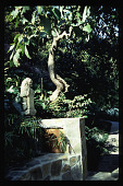 view [Untitled Garden in Bel Air, California]: Japanese stone sculpture near bouquet canyon stone bench. digital asset: [Untitled Garden in Bel Air, California] [slide]: Japanese stone sculpture near bouquet canyon stone bench.