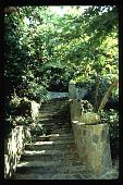 view [Untitled Garden in Bel Air, California]: stone stairway leading to upper hillside. digital asset: [Untitled Garden in Bel Air, California] [slide]: stone stairway leading to upper hillside.