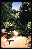 view [Untitled Garden in Hollywood, California]: assorted garden pottery. digital asset: [Untitled Garden in Hollywood, California] [slide]: assorted garden pottery.