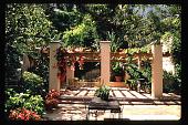 view [Untitled Garden in Hollywood, California]: pergola in rear garden. digital asset: [Untitled Garden in Hollywood, California] [slide]: pergola in rear garden.