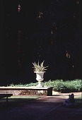 view [Mountain Meadow]: the pool area, showing an urn with a Phormium tenax plant, a frog sculpture, and Vinca major (southwest). digital asset: [Mountain Meadow]: the pool area, showing an urn with a Phormium tenax plant, a frog sculpture, and Vinca major (southwest).: 1999 Aug.