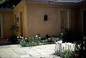 view [Untitled Garden, Pebble Beach, California]: the patio, showing paving and iris in bloom. digital asset: [Untitled Garden, Pebble Beach, California]: the patio, showing paving and iris in bloom.: 1999 Apr.