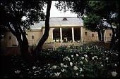 view [Untitled Garden, Pebble Beach, California]: a view of the house with geophytes and tulips in the foreground. digital asset: [Untitled Garden, Pebble Beach, California]: a view of the house with geophytes and tulips in the foreground.: 1999 Apr.