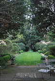 view [Mrs. Brayton Wilbur Garden]: allee from terrace. digital asset: [Mrs. Brayton Wilbur Garden]: allee from terrace.: 2003 Mar.