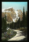 view [Canadian Rockies]: a dirt road meanders through a scenic route with an unidentified mountain in the background. digital asset: [Canadian Rockies]: a dirt road meanders through a scenic route with an unidentified mountain in the background.: [between 1915 and 1930]