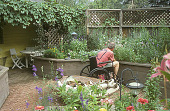 view [Marshall Garden for the Physically Challenged]: man tends to raised beds; grape arbor in upper left. digital asset: [Marshall Garden for the Physically Challenged]: man tends to raised beds; grape arbor in upper left.: 2004 Sep.