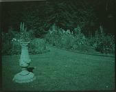 view [Foster Garden] digital asset: [Foster Garden]: [1920?]