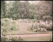 view [Foster Garden] digital asset: [Foster Garden]: [1920]