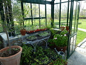 view [Breeze Hill Farm]: seedlings grown in the greenhouse will be planted in the kitchen garden. digital asset: [Breeze Hill Farm]: seedlings grown in the greenhouse will be planted in the kitchen garden.: 2011 Apr.