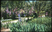 view [Vaillant Garden] digital asset: [Vaillant Garden]: 1920.