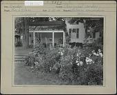 view [Clark Garden]: Perennial border, Lilium candidum digital asset: [Clark Garden] [photoprint]