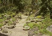 view [Baylis Garden]: concrete and stone container/trough garden. digital asset: [Baylis Garden]: concrete and stone container/trough garden.: 2005.