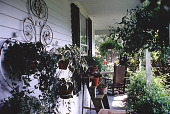 view [The Miller's House]: potted plants on porch. digital asset: [The Miller's House]: potted plants on porch.: 1998 Jul.