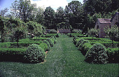 view [Windy Hill]: view of box parterre from house. digital asset: [Windy Hill]: view of box parterre from house.: 1998 Jun.
