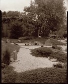 view [Miles Garden]: Japanese-style garden, looking toward house. digital asset: [Miles Garden] [safety film negative and photographic print]: Japanese-style garden, looking toward house.