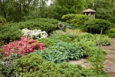 view [An Artist's Garden]: the borders have naturalized onto the terrace. digital asset: [An Artist's Garden]: the borders have naturalized onto the terrace.: 2009 Jun.
