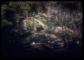 view [Greely Garden]: flowerbeds edged in hedges, gravel walkways. digital asset: [Greely Garden] [slide (photograph)]: flowerbeds edged in hedges, gravel walkways.