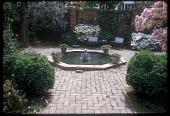 view [Herter Garden]: head-on view of pond and surrounding terrace. digital asset: [Herter Garden] [slide (photograph)]: head-on view of pond and surrounding terrace.