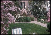 view [Herter Garden]: corner of lawn and walkway leading to stairs. digital asset: [Herter Garden] [slide (photograph)]: corner of lawn and walkway leading to stairs.