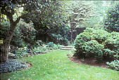 view [Harold S. Schutt, Jr. Residence]: black iron fence sparates two areas of lawn iwth shade plant borders. digital asset: [Harold S. Schutt, Jr. Residence]: black iron fence sparates two areas of lawn iwth shade plant borders.: 2002 Jun.