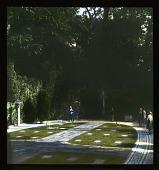 view [Cliveden]: the war cemetery. digital asset: [Cliveden]: the war cemetery.: 1929 Jun.