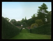 view [Esher Place]: expansive lawn and bordering hedges. digital asset: [Esher Place]: expansive lawn and bordering hedges.: 1929 Jun.