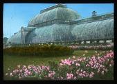 view [Royal Botanic Gardens, Kew]: the Palm House. digital asset: [Royal Botanic Gardens, Kew]: the Palm House.: 1920.