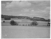 view [Miscellaneous Sites in England, Series 1]: farm fields and a hill with trees in an unidentified location. digital asset: [Miscellaneous Sites in England, Series 1] [glass negative]: farm fields and a hill with trees in an unidentified location.