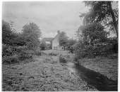 view [Miscellaneous Sites in Shere, Surrey, England, and Vicinity, Series 1]: the River Tillingbourne. digital asset: [Miscellaneous Sites in Shere, Surrey, England, and Vicinity, Series 1] [glass negative]: the River Tillingbourne.