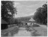view [Miscellaneous Sites in Shere, Surrey, England, and Vicinity, Series 1]: looking downstream along the River Tillingbourne from the Gomshall Mill. digital asset: [Miscellaneous Sites in Shere, Surrey, England, and Vicinity, Series 1] [glass negative]: looking downstream along the River Tillingbourne from the Gomshall Mill.
