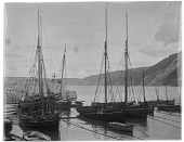 view [Miscellaneous Sites in Clovelly, Devon, England]: boats in the harbor at high tide. digital asset: [Miscellaneous Sites in Clovelly, Devon, England] [glass negative]: boats in the harbor at high tide.