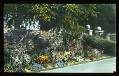 view Kilverstone Hall: a walkway and garden border. digital asset: Kilverstone Hall: a walkway and garden border.: [between 1925 and 1935]